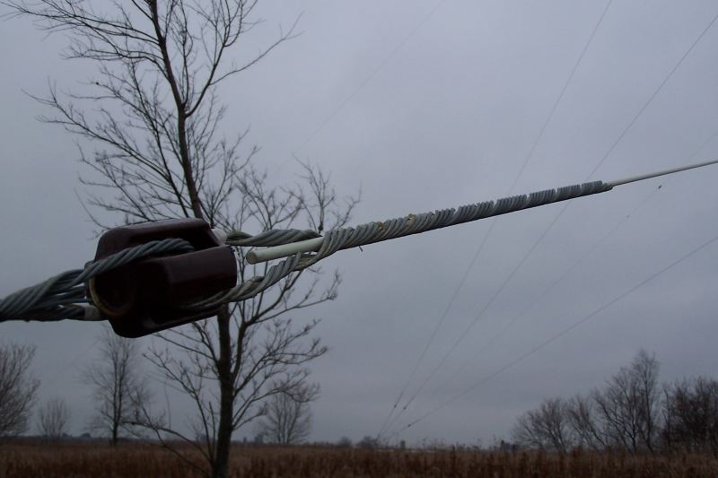 closeup of the guy grip on the fiberglass rod.  Pic taken late fall.